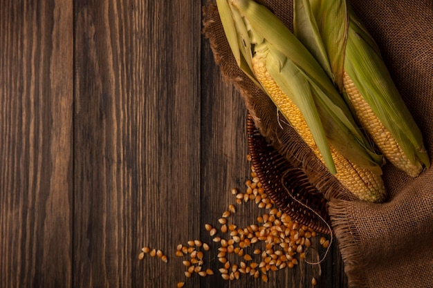 コピースペースのある木製のテーブルに分離されたカーネルと袋布バケツに髪の毛を持つ有機新鮮なトウモロコシの上面図