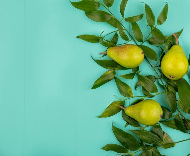 コピースペースと青色の背景に葉と梨のパターンのトップビュー