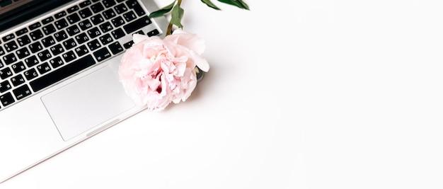 모란 꽃 복사 공간 개념 배경과 텍스트를 위한 공간의 상위 뷰
