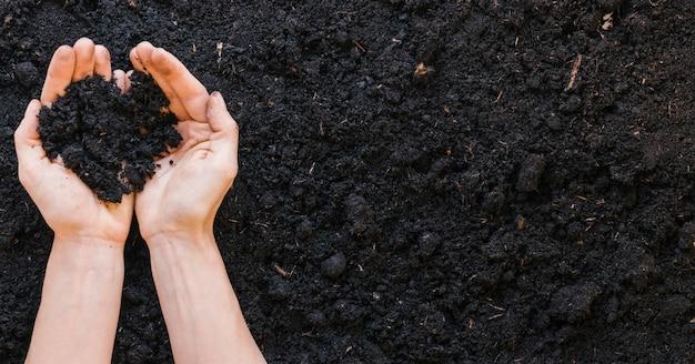 Вид сверху руки человека, держащего почву