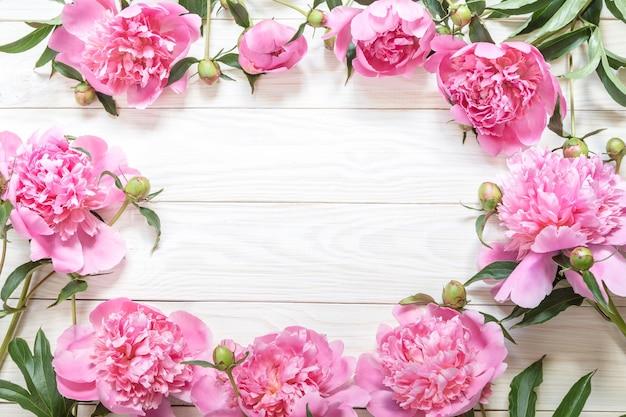 コピースペースのあるピンクの牡丹の上面図