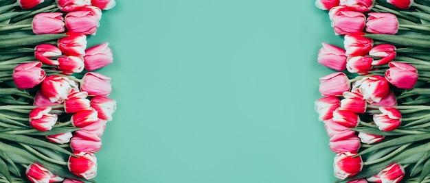 緑の表面にピンクのチューリップの上面図