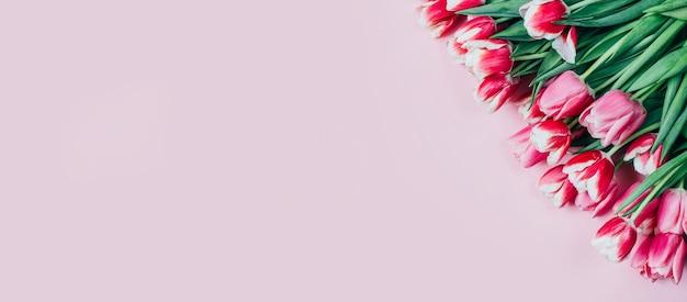 ピンクの表面にピンクのチューリップの上面図