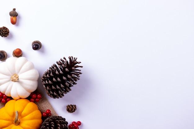 흰 종이 배경에 호박과 붉은 열매의 상위 뷰. 가을 개념 또는 추수 감사절.