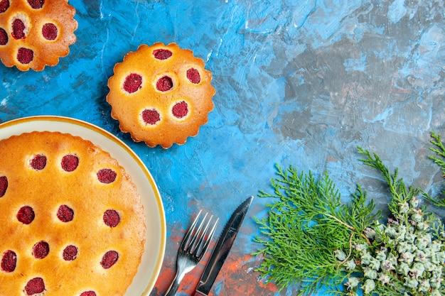 라즈베리 케이크와 가지의 상위 뷰