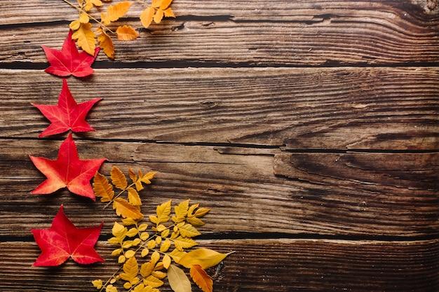 赤いカエデの葉の上から見ると、暗闇の中で小さなものから大きなものまでいくつかの黄色の葉が並んでいます。