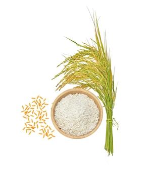 흰색 배경에 고립 된 쌀 곡물의 상위 뷰