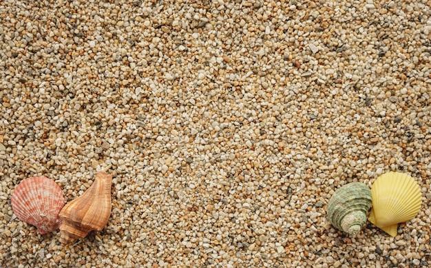 Вид сверху на песок с ракушками