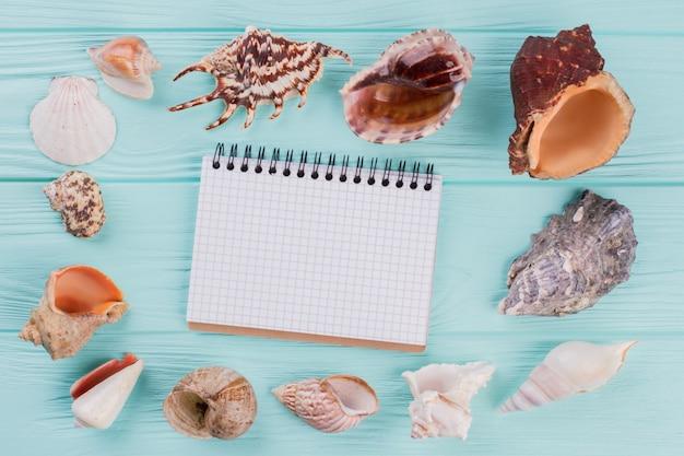 Вид сверху на набор различных морских раковин и блокнот в центре композиции на бирюзовых фонах.