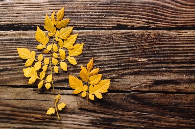 暗い素朴な木製のいくつかの黄色の葉の上から見る