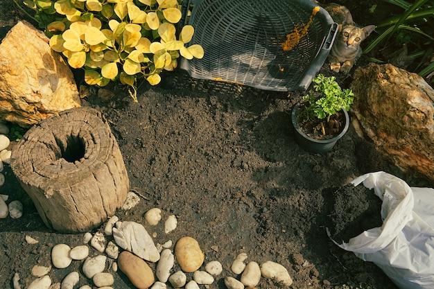 작은 정원의 상위 뷰