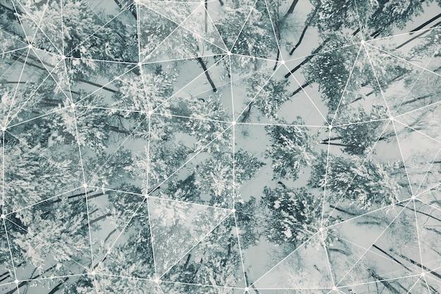 연결 눈 덮인 숲의 상위 뷰
