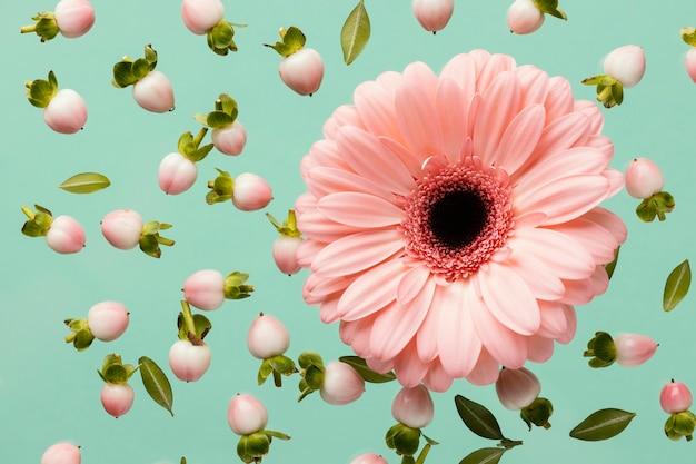 ガーベラと春の花のつぼみの上面図