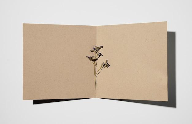 Вид сверху канцелярской бумаги с растением