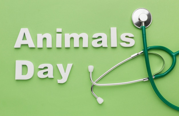 動物の日のための聴診器のトップビュー