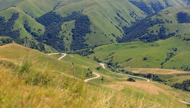 草が生い茂った丘や牧草地の平面図。ロシアのコーカサスで撮影。