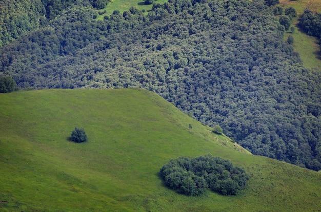 Вид сверху на заросшие травой холмы и луга. снято на кавказе, россия.