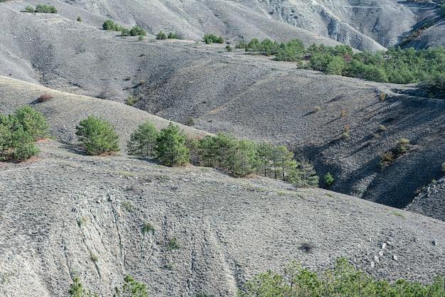石灰岩と砂岩のなだらかな丘陵地帯の上面図