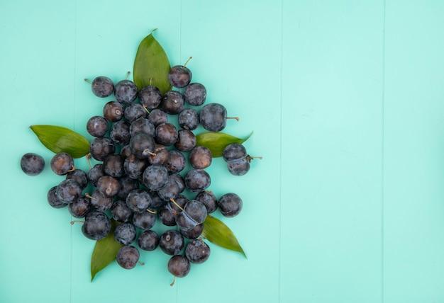 コピースペースと青色の背景に葉を持つ小さな酸っぱい黒っぽい果物スローのトップビュー