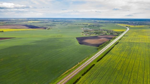 ベラルーシの播種された緑の上面図。ベラルーシの農業。テクスチャ。