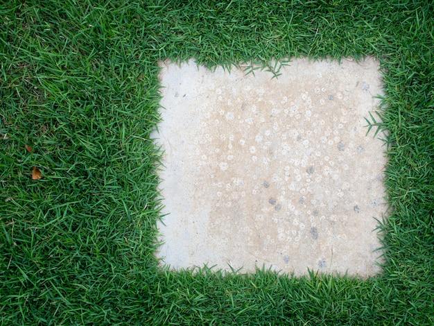 Вид сверху текстуры газона