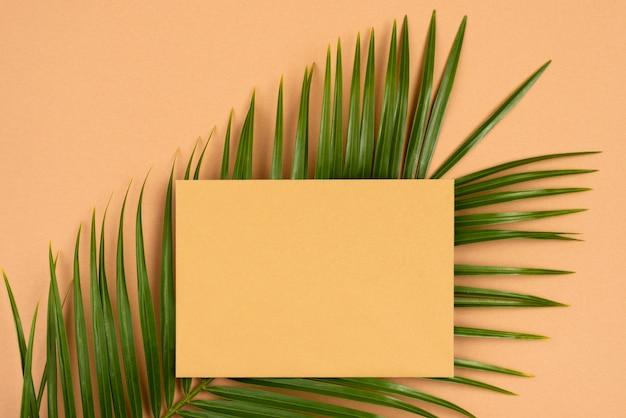 Вид сверху на тонкие листья растений с бумагой