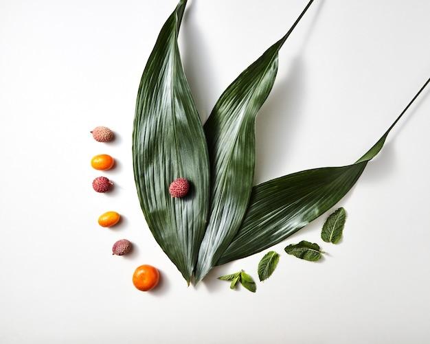 トロピカルフルーツの上面図-白地に分離された常緑のエキゾチックな葉とミントの葉を持つlichees、みかん、kumwat。食品のコンセプト。