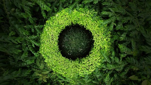 熱帯の緑の葉の平面図です。