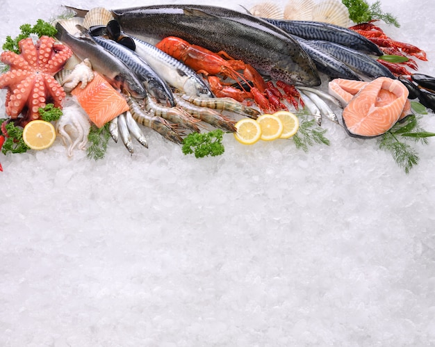 Вид сверху разнообразной свежей рыбы и морепродуктов на льду