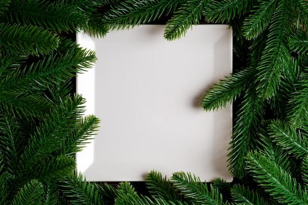 전나무 나무 가지에 둘러싸인 하얀 접시의 상위 뷰.