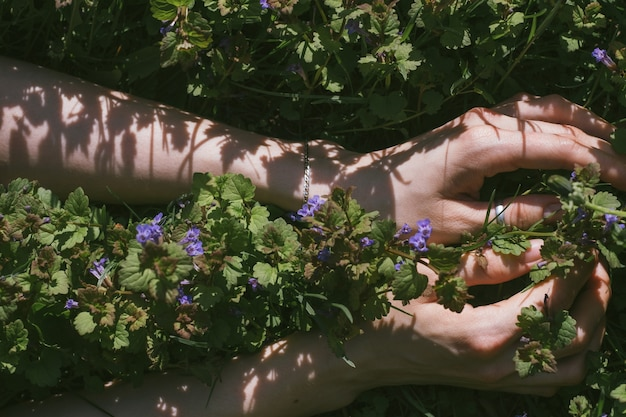 야생 멜리사 잔디에서 여자 손의 상위 뷰