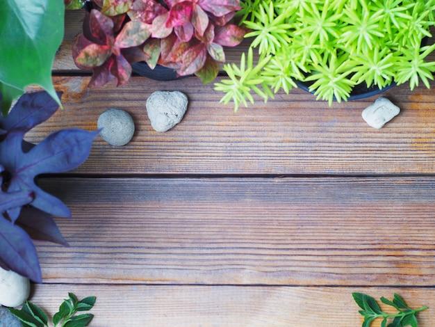 작은 식물과 돌이 있는 나무 배경의 최고 전망.