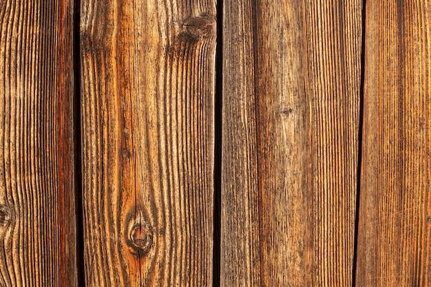 木の表面の上面図