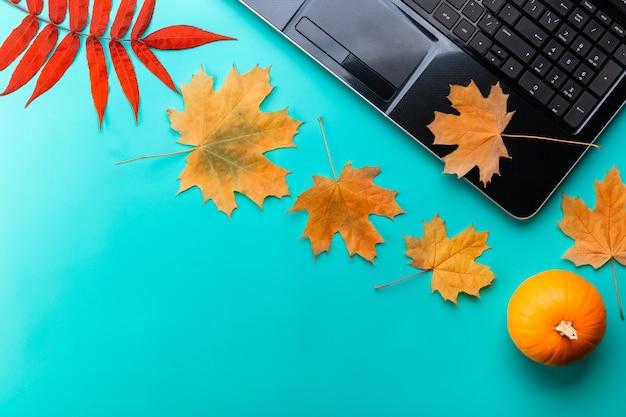 オープンラップトップとカラフルな秋のカエデの葉でいっぱいの作業スペースの上面図