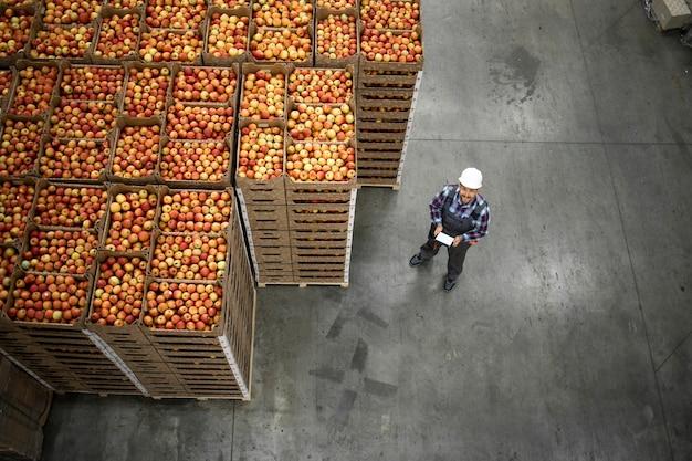有機食品工場の倉庫でリンゴの果実の木枠のそばに立っている労働者の平面図。