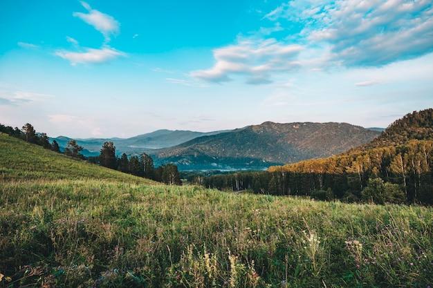Вид сверху на пустые холмы. пасмурный летний день. красивый пейзаж гор алтая с травой и лесом. республика алтай, россия.