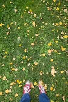 가을 노란 잎이 있는 푸른 잔디에 있는 남자의 빨간 운동화에 대한 상위 뷰