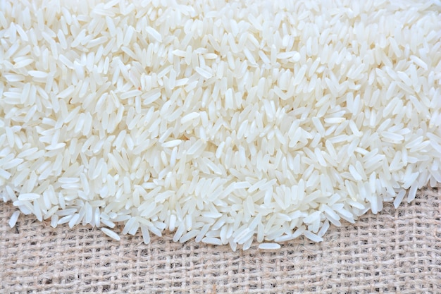 生白米の上面図