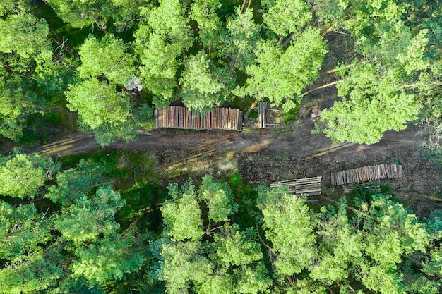 Вид сверху на зеленые деревья и бревна на дороге.