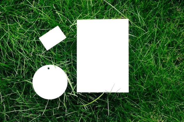Вид сверху на белые картонные пустые бирки разной формы, макет газонной зеленой травы с биркой для логотипа.
