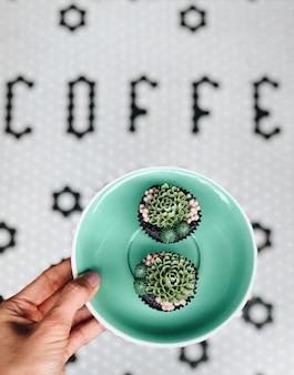 2つのカップケーキと緑のプレートを保持している若い女性の手の上面図。甘い食べ物とデザートのコンセプト。