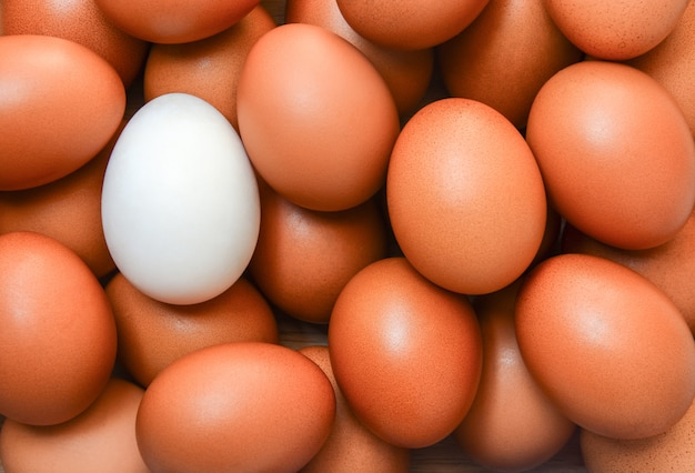 Top view of one white egg surrounded by brown eggs