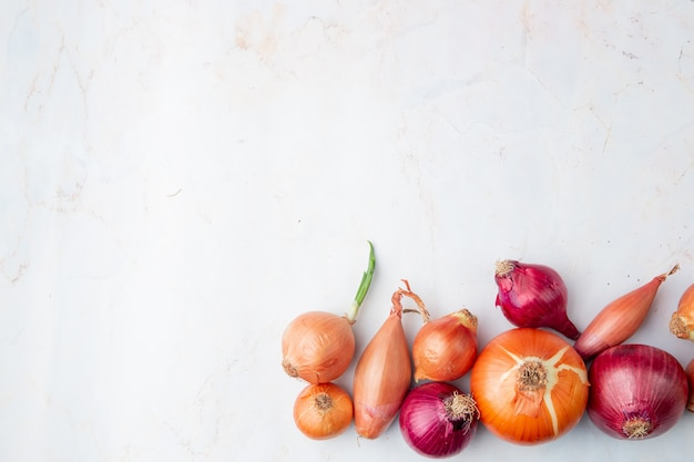 Top view of onions on right side and white background with copy space