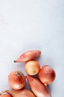 Top view of onions and shallots on white background with copy space