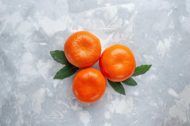 Top view orange tangerines whole citruses on light desk citrus exotic juice fruit