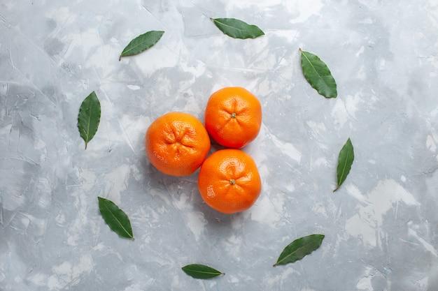 Top view orange tangerines whole citruses on the light desk citrus exotic juice fruit