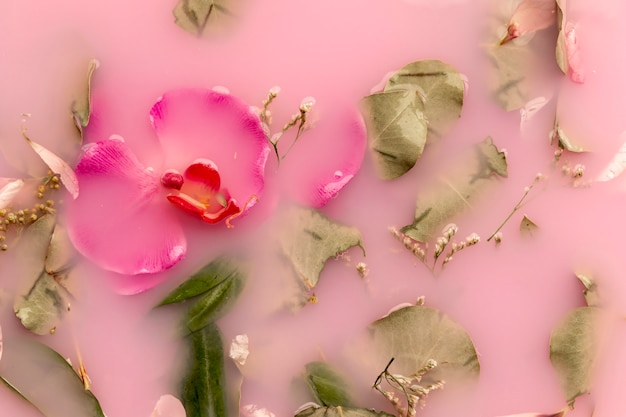 Top view orchids and roses in pink colored water