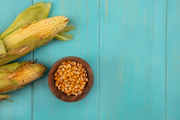 Top view of organic and healthy corns with hair with corn kernels on a wooden bowl on a blue wooden table with copy space