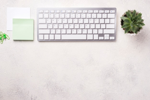 Top view of organized desk with keyboard and succulent plant