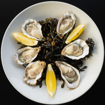 Top view of oysters from the province of zeeland with lemon slices served on a white plate